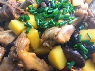 香菇土豆炖鸡块,装盘撒上葱花
