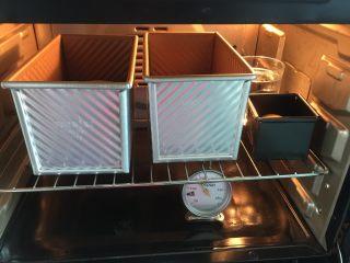南瓜沙拉肉松小吐司 ,烤箱中放入1杯开水后按保温键,保持烤箱温度在38℃,再放入吐司胚子到烤炉中进行二次发酵(50分钟左右),发至如图即可