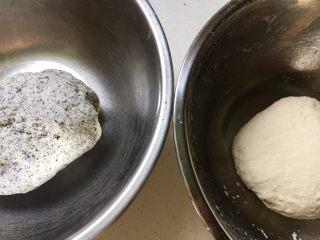 黑芝麻双色馒头卷,分别揉成三光的面团,然后放置在温暖处发酵