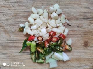 快手正餐 红烧茄子,大蒜子,葱白,新鲜辣椒切碎