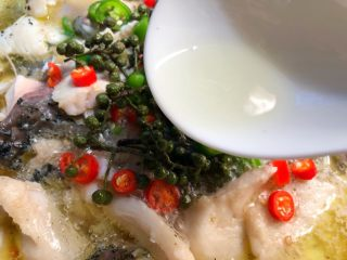 青花椒鱼,锅里烧适量热油,均匀的浇到青花椒和青红辣椒上即可