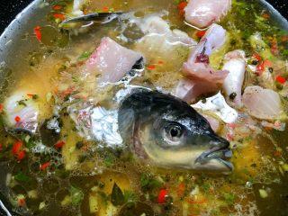 青花椒鱼,放入鱼头鱼骨煮熟