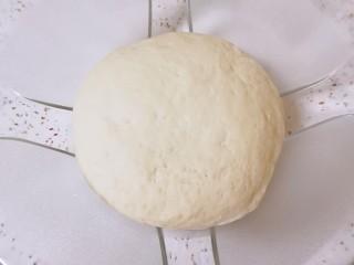 素菜包,面粉加入发酵粉、泡打粉和糖混合均匀,分次加入纯净水和成面团,盖上保鲜膜发酵1个小时左右。