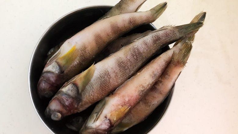#年年有鱼#  红烧海黄鱼,海黄鱼8条