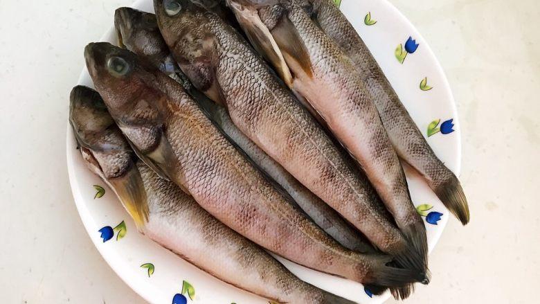 #年年有鱼#  红烧海黄鱼,把海黄鱼清洗干净,用厨房用纸擦去鱼身的水份