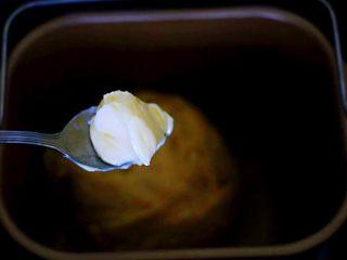 汉堡胚面包,加入提前室温软化的黄油,继续启动面包机揉面15分钟