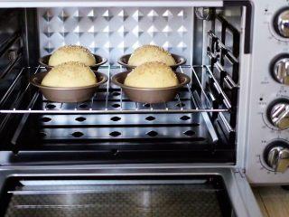 汉堡胚面包,入烤箱进行二次发酵,(天冷的话,可以在烤箱里放一碗热水)