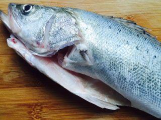 豆腐鲈鱼汤,鲜活的野生鲈鱼让鱼贩刮鳞去鱼鳃掏出内脏然后拿回家清洗干净