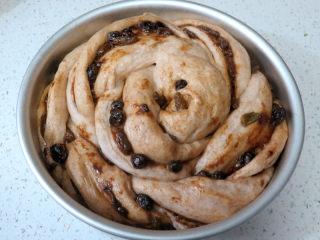 健康美味手撕包【肉桂果干黑麦面包】,面团发酵至两倍大