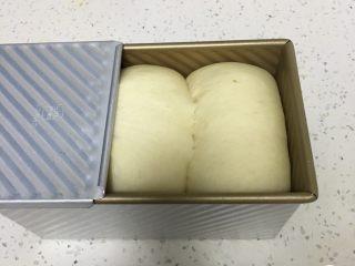 荔枝吐司面包,发酵至九分满,盖上盖子。