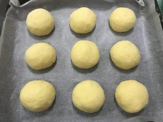 南瓜软欧,分割成50克一个面团,滚圆。