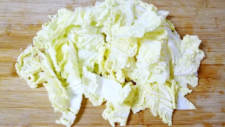 酸辣白菜,白菜叶随便切几刀。