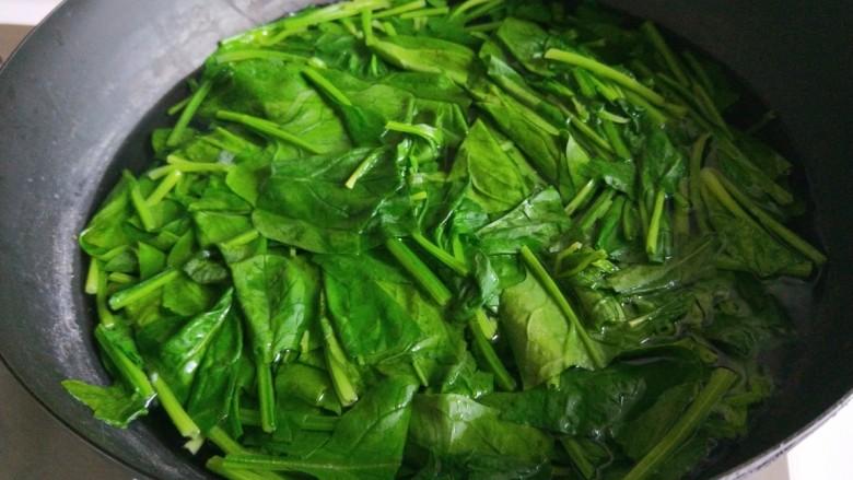 新文美食  菠菜凉拌粉丝,锅中放入适量水烧开,放入菠菜焯水一分钟。