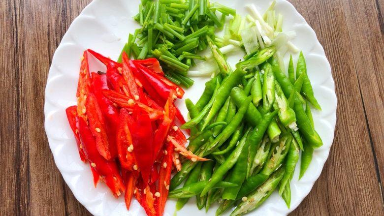 爆炒肥肠,青红辣椒洗净切块,葱洗净切段