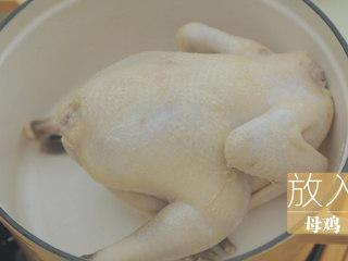 榴莲的3+2种有爱做法「厨娘物语」,将焯好水的母鸡放入珐琅锅中,放入100g榴莲瓤、5g虫草花、3颗红枣。