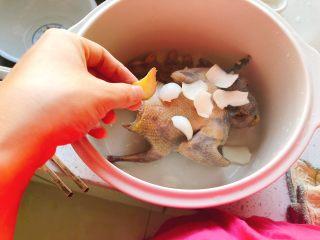 百合炖鸽子-滋补好汤,姜切一小片去腥即可,无需太多。