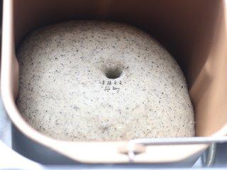 可爱的龙猫面包,约50分钟左右,面团已经发酵至2倍大小,手指粘粉戳洞不塌陷不回缩,一发完成