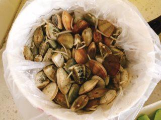 咖喱炒花蛤-好吃到舔壳,三角贝买来后,倒入自来水,水需淹没贝壳,加入1勺盐吐沙2小时。