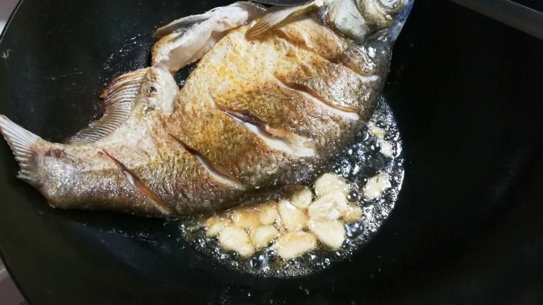 香菜鳊鱼,放入蒜片煎出香味