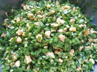 韭菜鸡蛋馅饺子, 搅拌均匀,韭菜鸡蛋馅就做好了。