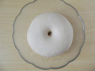 香菇培根披萨,将面团发酵至两倍大小,手指蘸面粉戳入面团底部,拿出手指后,面团不塌陷不回弹,就表示发酵完成了。