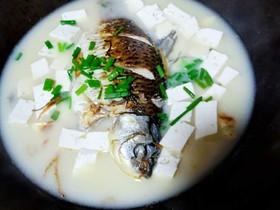 十味  奶白鲫鱼豆腐汤