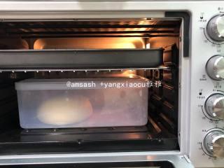 玫瑰豆沙花面包,揉圆放进盒子内,送进烤箱,调至发酵区,进行第一次发酵