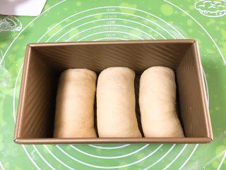 麦芽糖风味吐司,依次放入吐司盒。