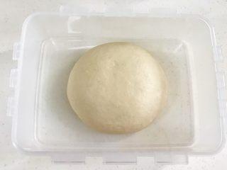 牛奶炼乳蔓越莓软欧,把揉好的面团取出滚圆,在28度左右的环境中进行基础发酵。