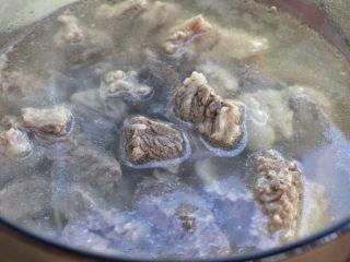 清炖牛肉萝卜汤,将压至熟烂的牛肉连同汤一起倒入汤锅中,葱姜挑出来丢弃不要