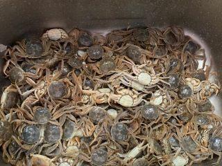 香辣螃蟹🦀,我买的是小螃蟹 不过全是母的 最好泡上一天 清洗若干遍  然后刷子统一刷一刷