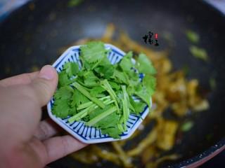 手撕蚝油杏鲍菇,加香菜