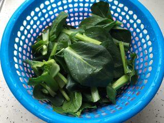小青菜鸡架汤,这期间我们洗净小青菜,控干水分