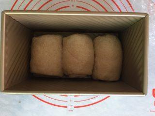 全麦吐司,放入吐司盒进行二发。