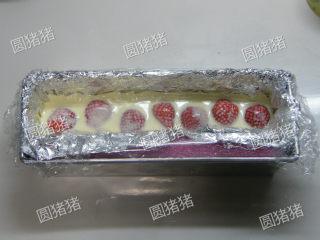 可可奶冻卷,倒入1/2的奶冻浆,放入新鲜草莓,移入冰箱冷藏1小时,再倒入剩下的1/2奶冻浆移入冰箱冷藏过夜。(如果剩下的奶冻浆已开始凝固,需隔水加热成液态再倒入)