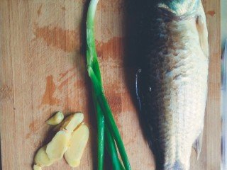 浓郁奶白鲫鱼汤,准备好所需要的食材,葱切段,姜切片