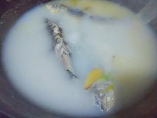 浓郁奶白鲫鱼汤,20分钟就熬到这个程度了,黄色的是油皮,不想吃太油腻的,煮好后把那层油打掉就可以了!全程熬制30分钟以上!
