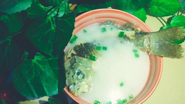 浓郁奶白鲫鱼汤