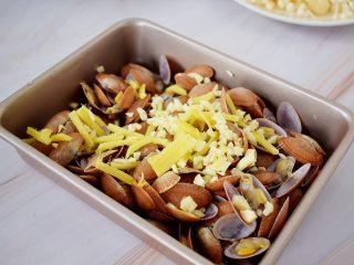 花甲粉,先把花甲放入烤盘中,放入蒜末和姜丝