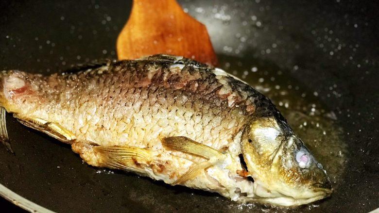 浅湘食光&干烧鲫鱼,鱼腌好,用厨房纸吸干,以免炸时溅油。锅中倒菜油或色拉油(淹过鱼一半),菜油烧热,色拉油可七八分热,放入鱼炸,鱼皮变金黄起皱翻面,不要炸太久,以免鱼老