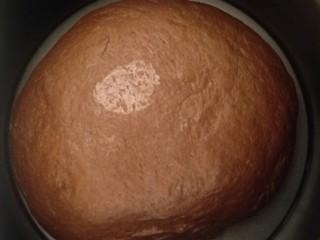 香浓巧克力爆浆面包,发到两倍大手指按压不回缩就是发好了