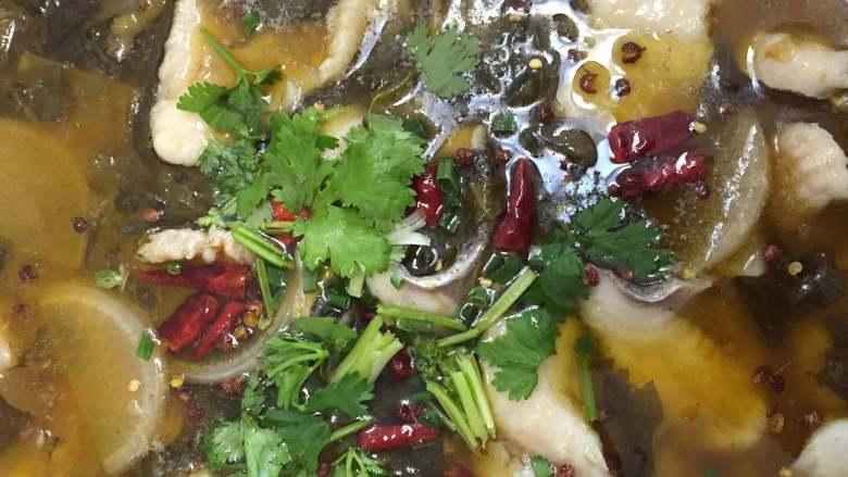 老坛酸菜鱼