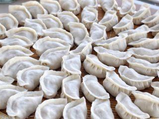东北猪肉酸菜馅饺子,把所有的饺子包好排放整齐,如果一次吃不完可以放进冰箱冷冻,没有时间做饭的时候就用它来救急