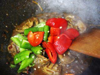 孜然老醋辣爆鸡胗,加入切块的青尖椒和红尖椒。
