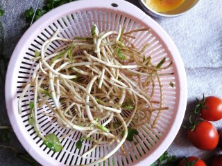 酱拌折耳根,鲜嫩的鱼腥草根买回来以后拔去根须,淘洗几次洗干净。
