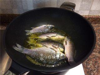 酸菜烧鲫鱼,放入鲫鱼炸至表皮焦黄。