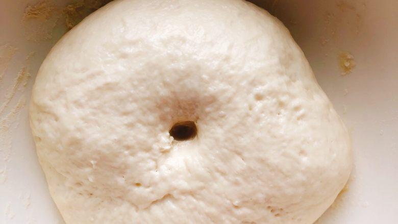 芝士培根披萨,面团发酵至2倍大,用手指戳面团,不回缩不内馅则面团发酵成功。