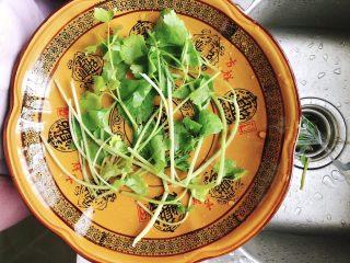 清蒸鱿鱼-下饭菜,取1小把小芹菜,洗干净后铺在碗底。