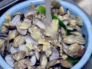 花蛤粥,捞出花蛤,用流水再冲洗一遍,让泥沙去得更干净。这一步之后,花蛤可以直接拿去炒,也可以择出花蛤肉来做粥。
