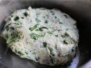 小白菜饼,和成面团,盖上一块湿布,醒二十分钟。